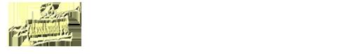 Scuola di Musica e Canto. STUDIO MUSICALE Srl – Viale Amendola n. 628 – 41125 Modena – Tel. 059.222204  C.F. 03302040369